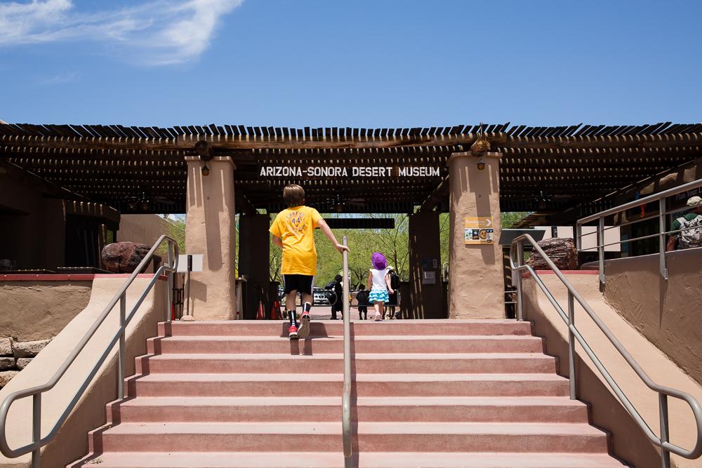 Desert museum WR-1421
