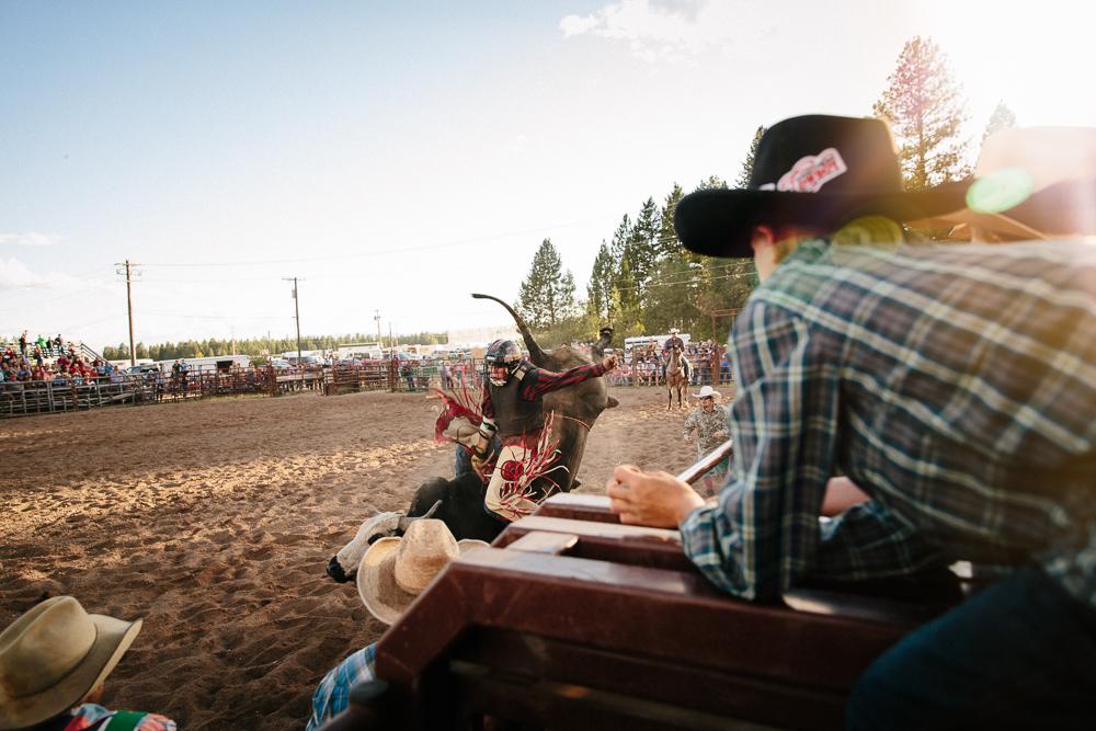 YOLO Montana Rodeo wr--2