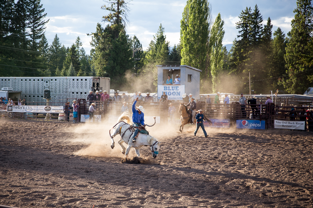YOLO Montana Rodeo wr-2564
