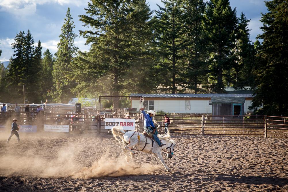 YOLO Montana Rodeo wr-2568