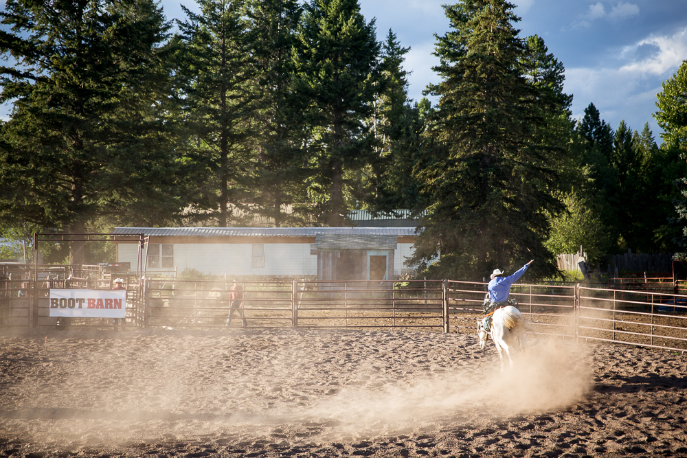 YOLO Montana Rodeo wr-2570