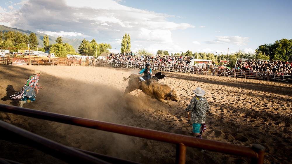 YOLO Montana Rodeo wr-2607