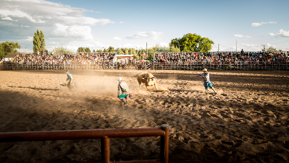 YOLO Montana Rodeo wr-2610