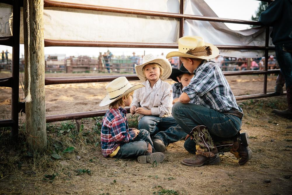 YOLO Montana Rodeo wr-2628